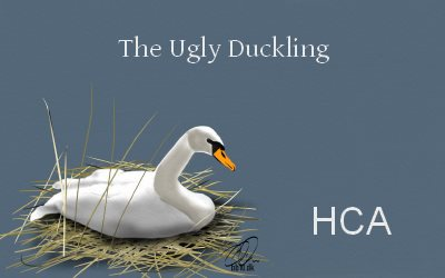 HCA The Ugly Duckling YouTube