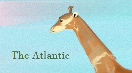 Giraffes The Atlantic