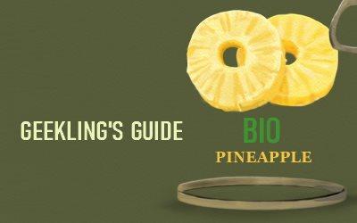 Geekling's Guide